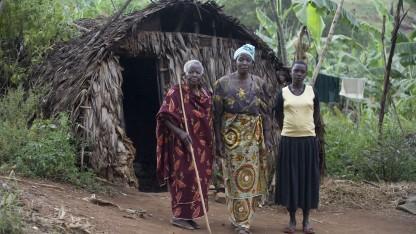 Resultat: Træer hjælper klima i Madagaskar