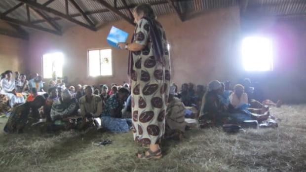 1133  tanzanianere lærer menighedspleje